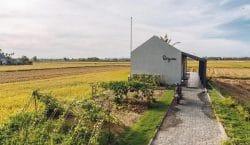 Ngôi nhà mang vẻ đẹp bình dị giữa đồng lúa bao la tại miền quê Hội An